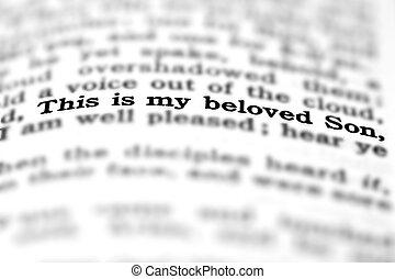 New Testament Scripture Quote Beloved Son