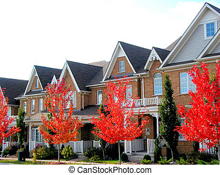 Real estate: A row of new townhomes with bright red fall trees