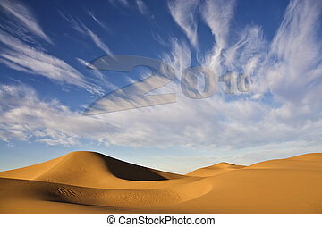 New Year 2010 with desert sand dunes and cloudy blue sky