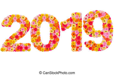 New year 2019 made from gerbera flowers isolated on white background