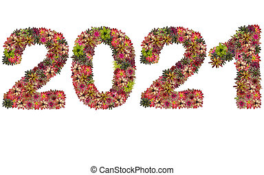 New year 2021 made from bromeliad flowers isolated on white background