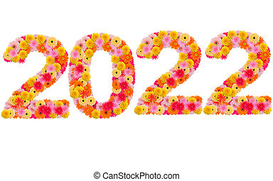 New year 2022 made from gerbera flowers isolated on white background