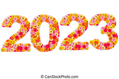 New year 2023 made from gerbera flowers isolated on white background