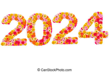New year 2024 made from gerbera flowers isolated on white background