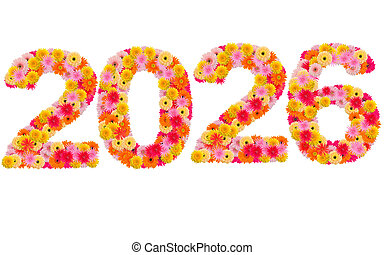 New year 2026 made from gerbera flowers isolated on white background