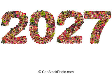 New year 2027 made from bromeliad flowers isolated on white background