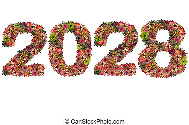 New year 2028 made from bromeliad flowers isolated on white background