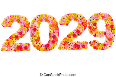 New year 2029 made from gerbera flowers isolated on white background