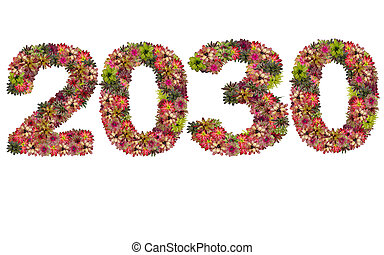 New year 2030 made from bromeliad flowers isolated on white background