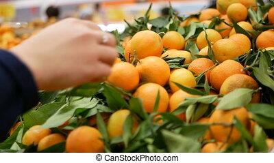 New Year hristmas mandarins - New Year. Christmas...