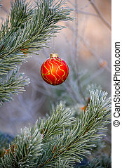 New Year's ball hanging on a branch of a Christmas tree in the forest