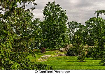 New York Botanical Garden, Bronx Spring Grass