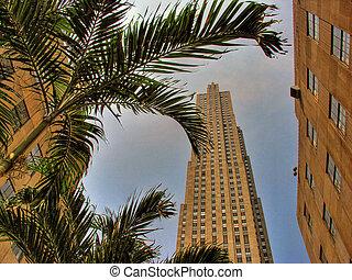 New York City, 2005