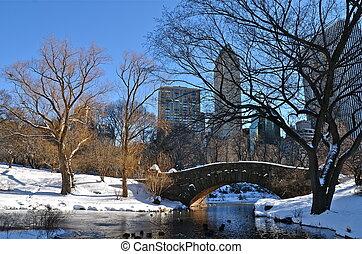 New York City at Gapstow bridge