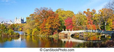New York City - Central Park Panoramic Landscape