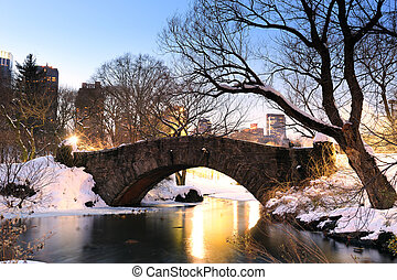 New York City Manhattan Central Park in winter