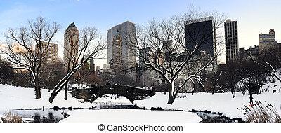 new york city, manhattan, zentraler park, panorama, an, dämmerung