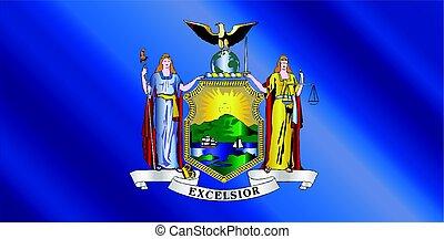 New York State Flag Gloss