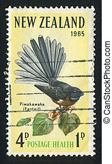 NEW ZEALAND — CIRCA 1965: stamp printed by New Zealand, shows fantail, circa 1965