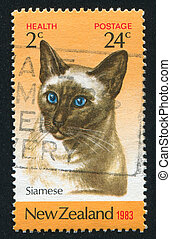 NEW ZEALAND - CIRCA 1983: stamp printed by New Zealand, shows Siamese cat, circa 1983