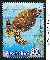 NEW ZEALAND - CIRCA 2001: stamp printed by New Zealand, shows Marine Reptiles, Loggerhead turtle, circa 2001