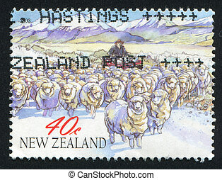 Sheep in high country - NEW ZEALAND - CIRCA 2003: stamp ...