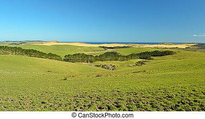 New Zealand Far North landscape