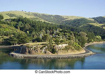 New Zealand hills landscape