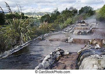 New Zealand Hot Spring and Spa Pool in Rotorua - Hot springs...