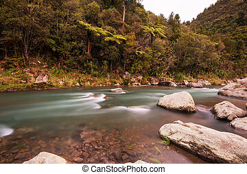New Zealand river