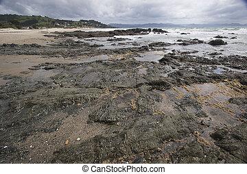 New Zealand - Rocky Beach