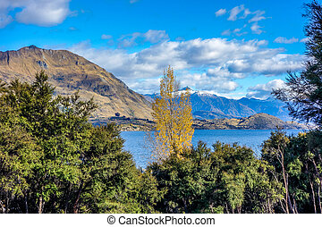 New Zealand - Wanaka Lake
