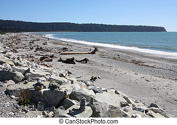 New Zealand - West Coast. Driftwood debris after storm at...