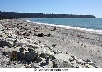 New Zealand - West Coast. Driftwood debris after storm at...