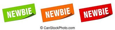newbie grunge vintage retro band. newbie ribbon - newbie ...