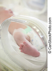 Newborn baby feet in incubator