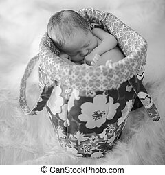Newborn Baby in Bag B&W, Newborn Photography Image