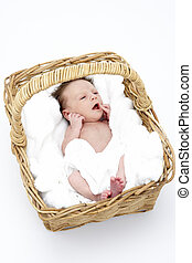 Newborn Baby In Basket