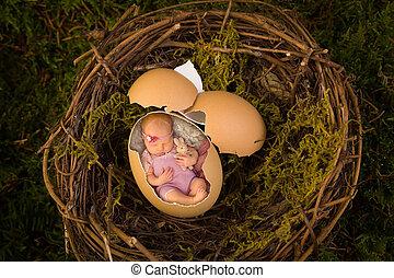 Newborn baby in bird's nest