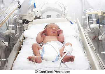 Newborn baby inside incubator - Portrait of newborn baby...