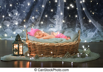 Newborn baby sleeping in a basket
