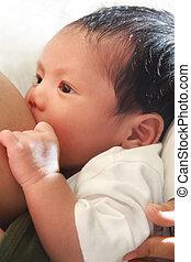 newborn breast feeding