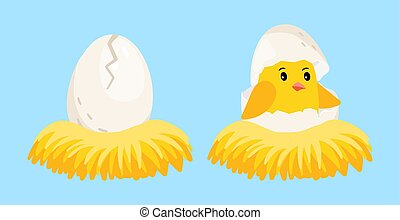 Newborn chick. Cartoon egg and hatched chick with eggshell on head in the nest vector illustration