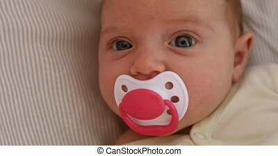 newborn girl lying on the sheet and sucks pacifier. The baby...