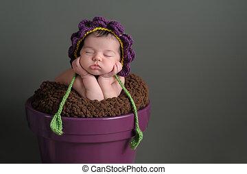 Newborn Girl Wearing a Flower Bonnet