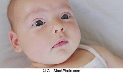 newborn niemowlę, mały, toddler., looking., aparat ...