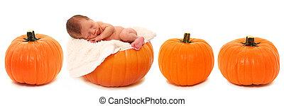 Newborn on Pumpkin - Adorable newborn baby laying on pumpkin...