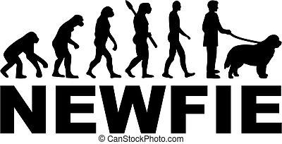 Newfoundland Evolution with name