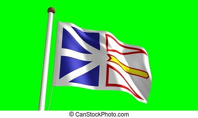 Newfoundland flag (seamless & green screen)
