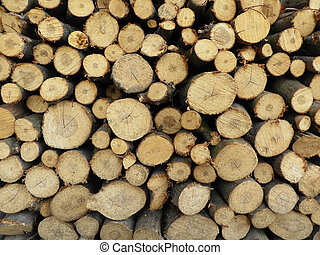 Newly felled timber. stack of wood for fire in winter